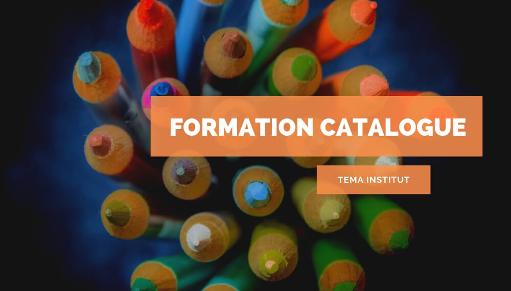 Formation catalogue – formation tema